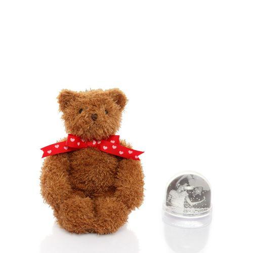 Porta-retrato-globo-de-neve-urso