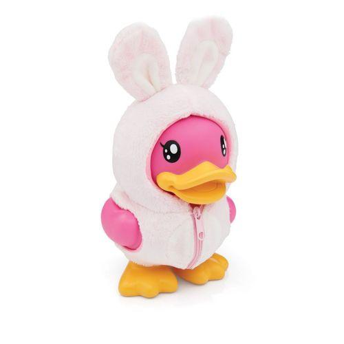 Cofre-b-duck-coelho