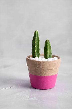 Vaso-ceramica-rosa-201