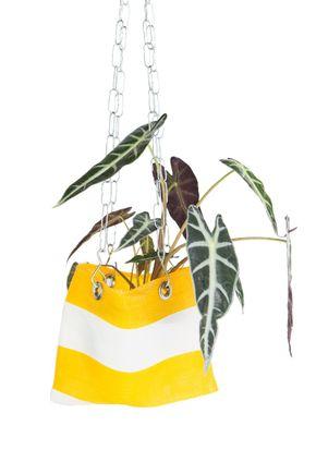 Hanger-feira-amarelo