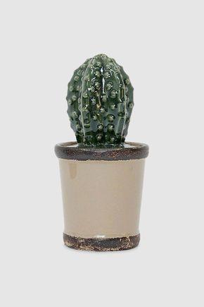 Pote-cactus