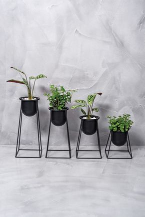 Conjunto-4-vasos-tripe-preto