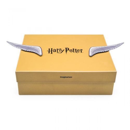 Caixa-com-ima-harry-potter-pomo-de-ouro