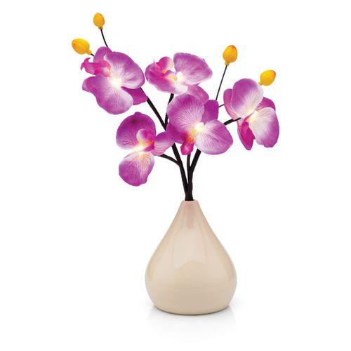 Luminaria-vaso-de-orquideas