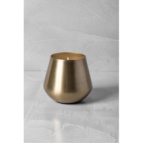 Vela-dourada-cone