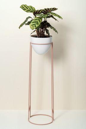 47be5be8150 Cachepots e Vasos para Plantas | Casa MinD