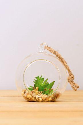 Terrario-vidro-ninho