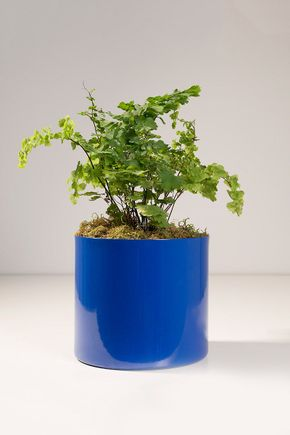 Vaso-cachepot-aluminio-azul