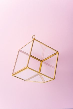 Terrario-box