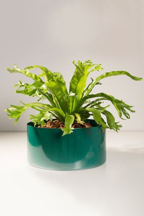 Vaso-cachepot-aluminio-verde-g
