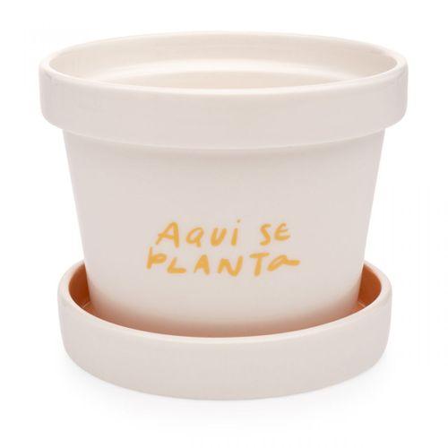 Vaso-com-prato-aqui-se-planta
