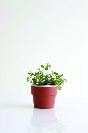 Vaso-autoirrigavel-p-terracota