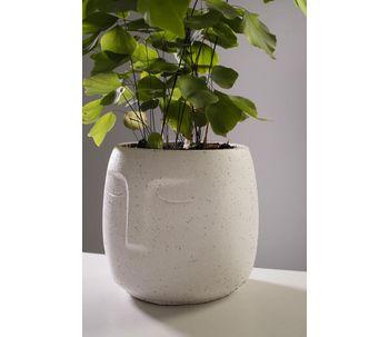 Vaso-cimento-rosto-branco