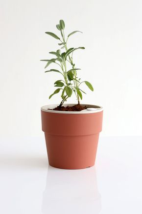 Vaso-autoirrigavel-g-terracota