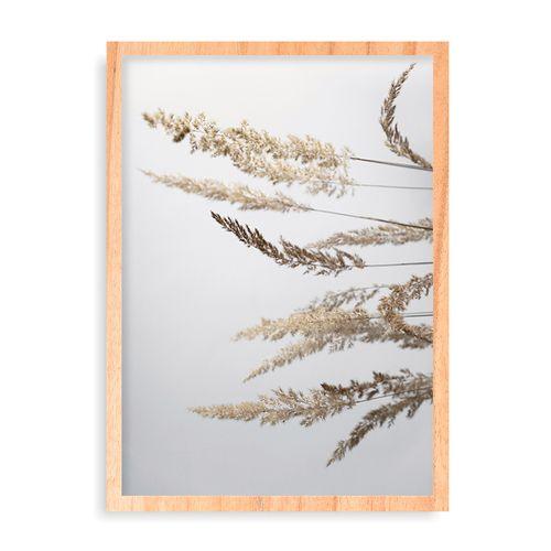 Quadro Glorious Golden Pampas Grass - 31,7 x 44 cm - Pinus