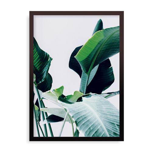 Quadro Botanic - 31,7 x 44 cm - Preto