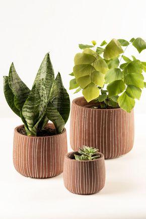 Conjunto-de-3-vasos-terracota-linhas
