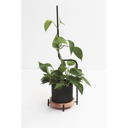 Vaso Cachepot com Guia Para Plantas Preto