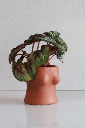 Vaso-busto-moreno