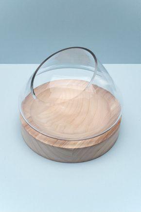 Terrario-com-base-de-madeira-ninho