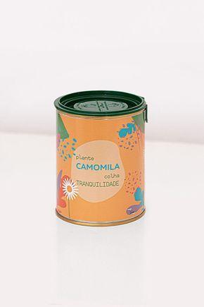 Camomila-do-Bem