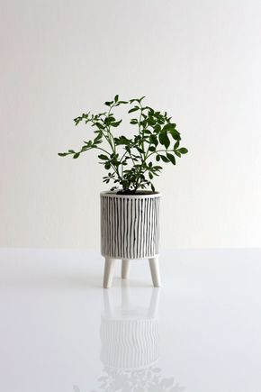 Cachepot-Ceramica-Linhas-PB-P